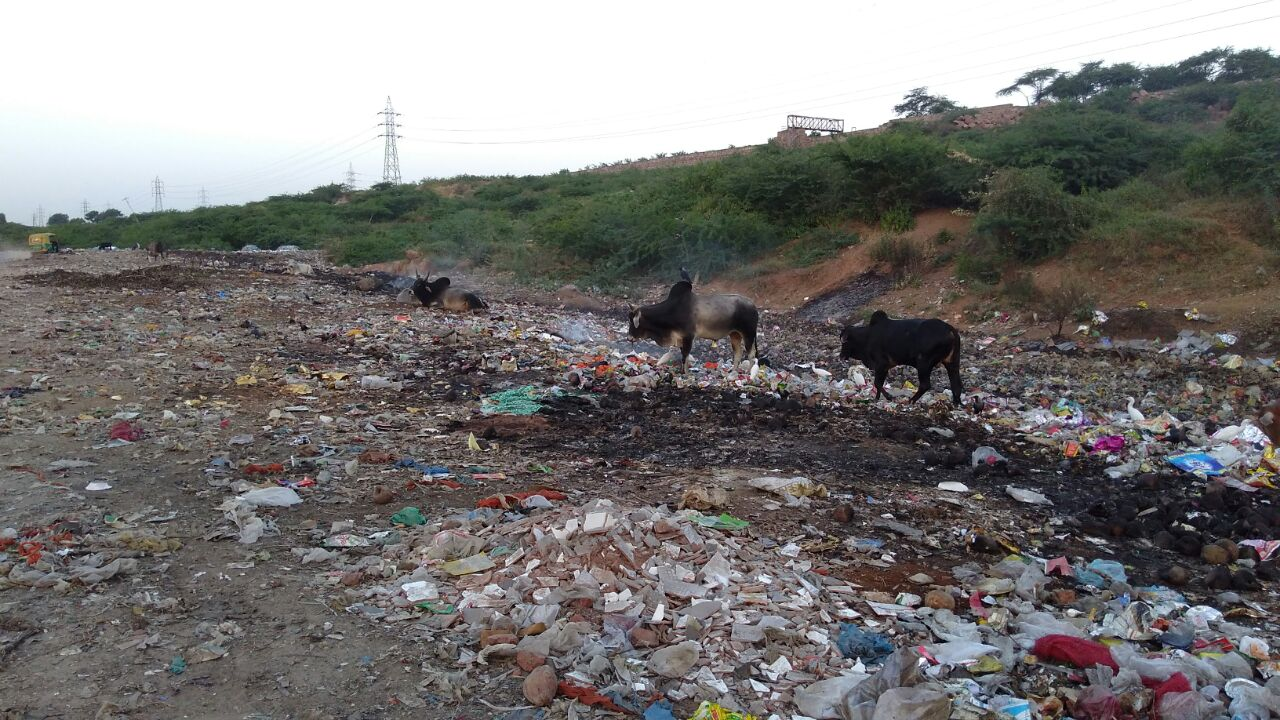 Garbage Yard to City Forest Sainik Colony